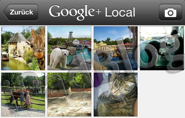 Fotos hinzufügen bei der iOS App Google+ Local