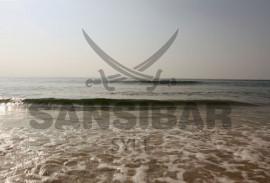 Meer-mit-Logo-Sansibar