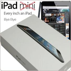 Bye Bye iPad mini im Juni 2015